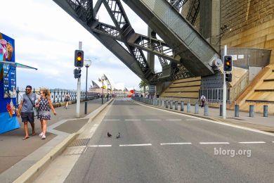 9:30am NYE at the iconic Sydney bridge